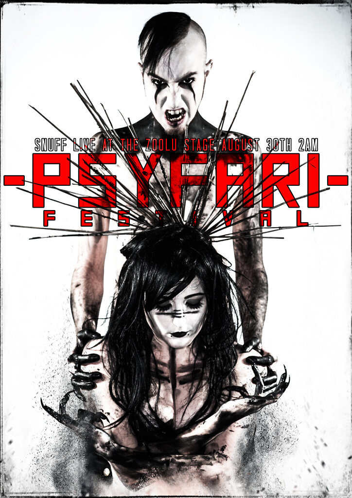 PSYFARI-FINAL-POSTER.jpg